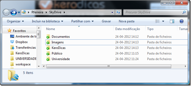 SkyDrive_KERODICAS_03