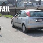 epic-fail-photos-walking-the-dog-fail